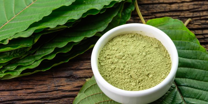 Why EVERYONE Should Care About the Government's War on Cannabis and Kratom